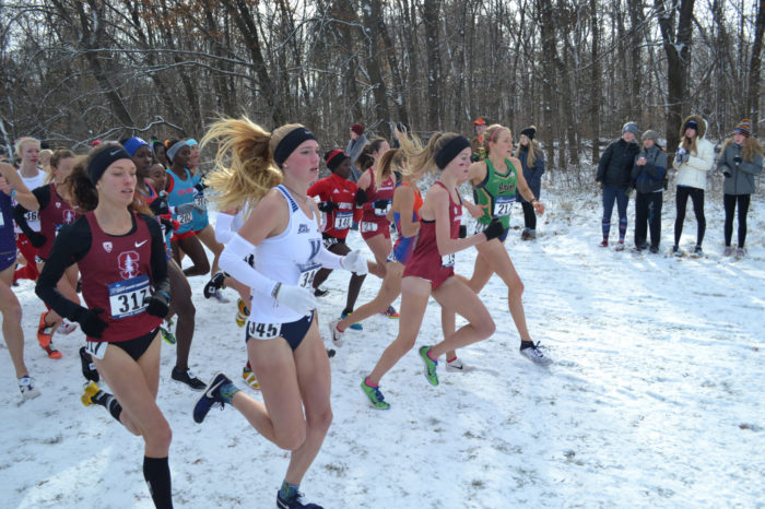 2018 NCAA Cross Country Championships Gallery